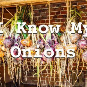 I Know My Onions – Text Sign - Photo Walk UK