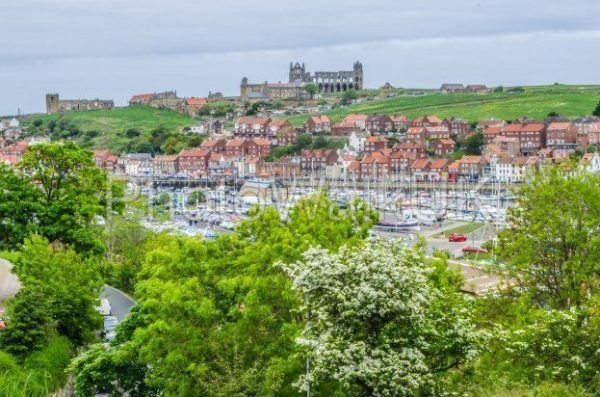 Whitby, North Yorkshire, England. June 10 2013. View across harbour towards the Abbey - Photo Walk UK